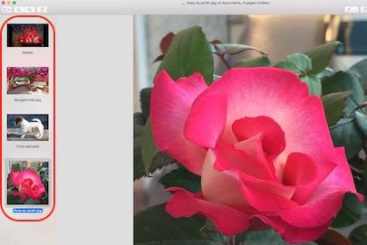 Aperçu et les fichiers image-Traitement par lot