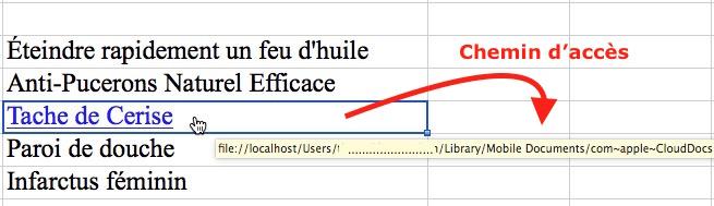 Lien hypertexte-Voir le lien