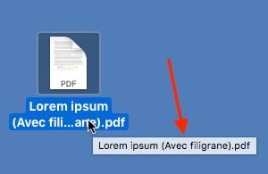 «Avec filigrane» rajouté au nom du fichier modifié